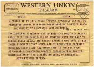 telgram